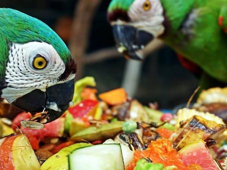 Zoológico de Barranquilla abre nuevamente sus puertas al público