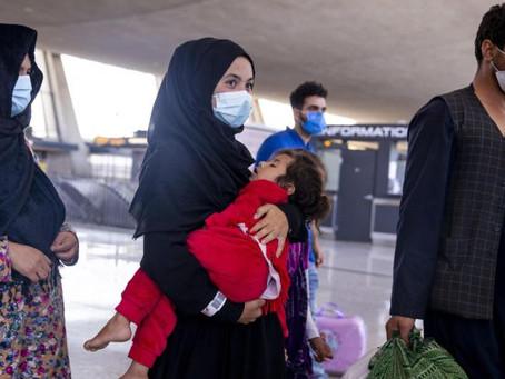 """""""Llegada de afganos es una oportunidad de integración social y cultural"""": Angélica Rodríguez"""