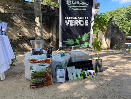 Con estrategia de huertas en casa, Barranquilla trabaja por convertirse en biodiverciudad