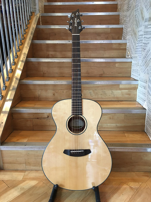 Breedlove Discovery Concert