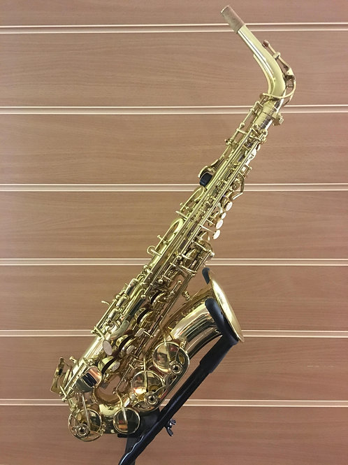 Rosetti Series 5 Alto Sax Outfit Gold