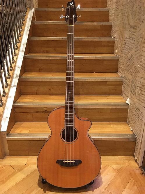 Breedlove BJ350 Studio