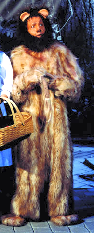 Lion (Wizard of Oz Costume)