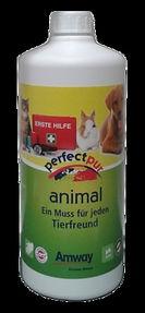 animal1000_1280b-2_m.jpg