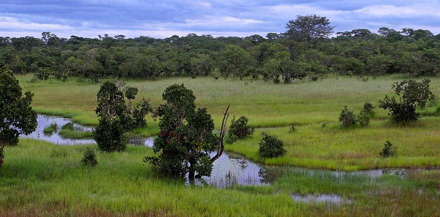Kasungu Nationalpark