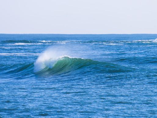 Blue Wave e Big Techs – Sem motivos pra pânico