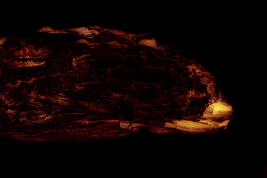 Wat glijdt daar door het donker_