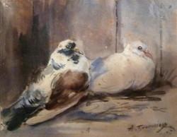 Les 2 pigeons