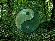symbole TAI Qi du YIN YANG