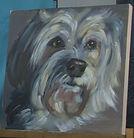 paint your pet dog.JPG