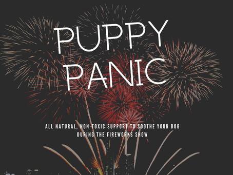 Puppy Panic