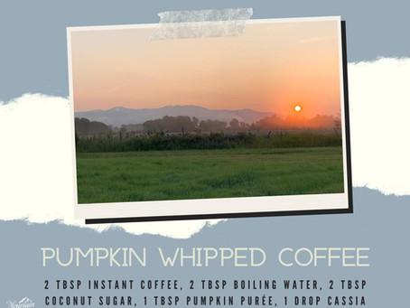 Pumpkin Whipped Coffee