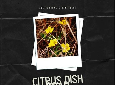 Citrus Dish Soap