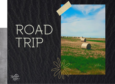 Road Trip - diffuser blend