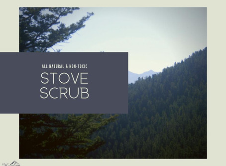 Stove Scrub