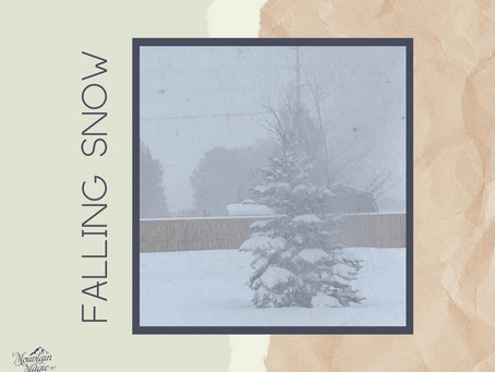 Falling Snow - diffuser blend