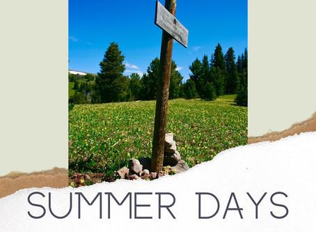 Summer Days - Diffuser Blend
