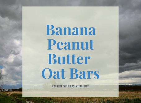 Banana Peanut Butter Oat Bars