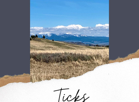 Ticks - Repel & Treat the Bites
