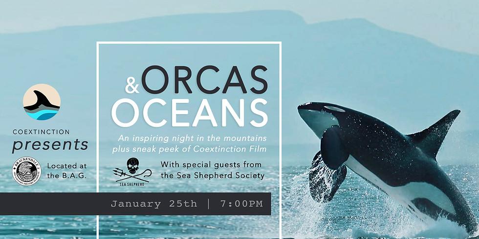 Orcas & Oceans: An Inspiring Evening in the Mountains