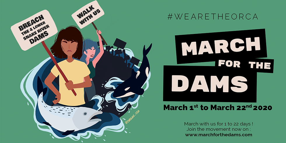 March 4 The Dams #WeAreTheOrca