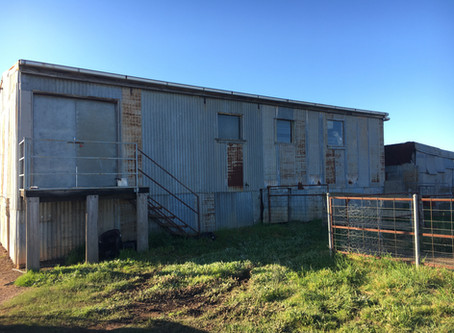 Mystery of the shearing shed