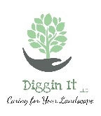 Diggin It - reduced pixels logo.jpg