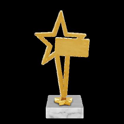 Награда Звезда