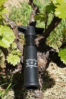 Pompe à vin du Beaujolais