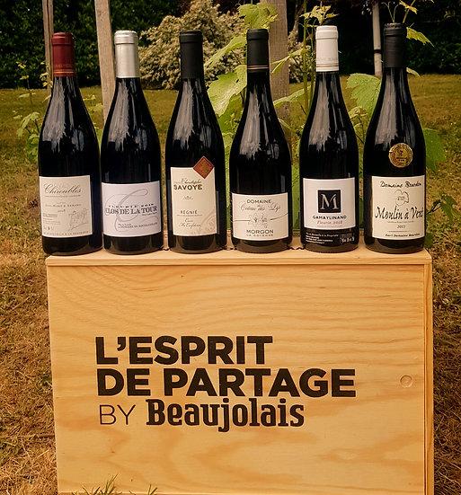 La découverte-carton de 6 bouteilles