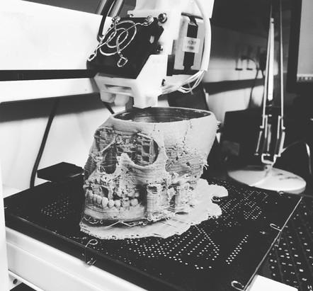 Skull 3D Printing