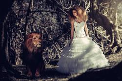 Robe Lion
