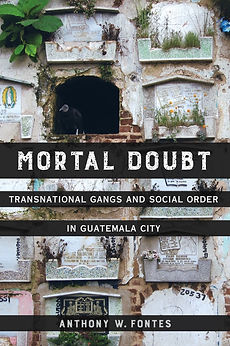 Fontes_Mortal_Doubt_Cover_edited.jpg
