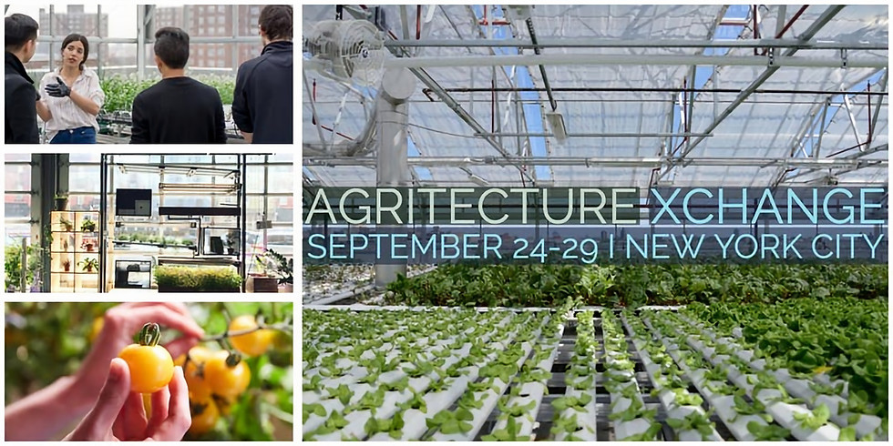 Investing in a Local Food Economy & Bridging the Urban-Rural Divide