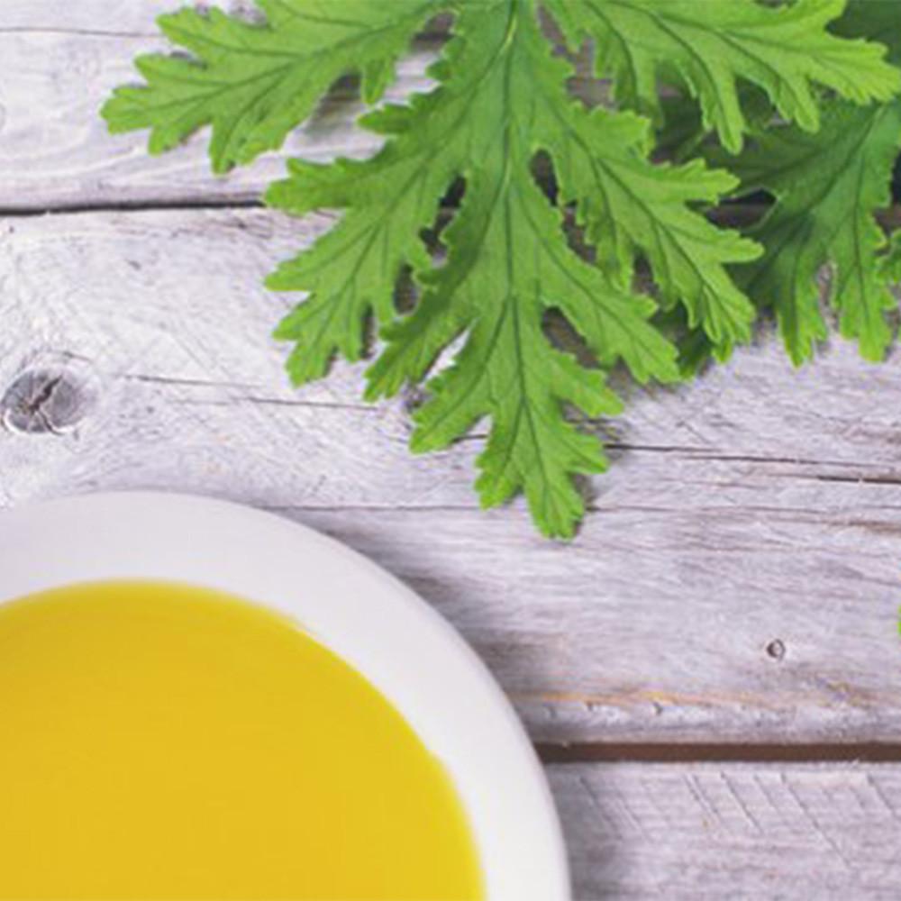 Home Made All-Natural Mosquito Spray Recipe with Citronella Oil