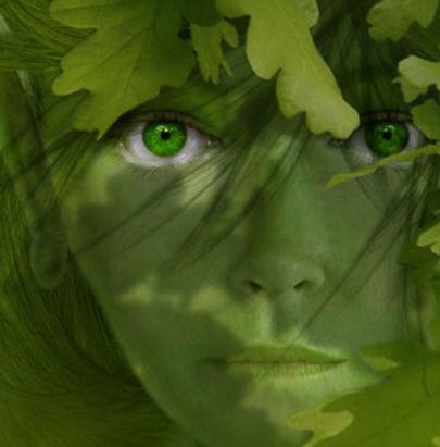 Green_Lady.jpg