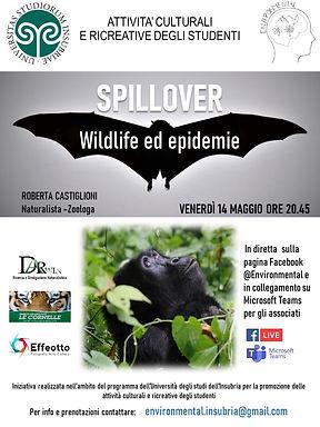 thumbnail_Locandina Spillover Università