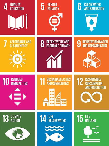 SDG%20Goals%202_edited.jpg