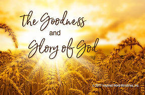 wheat, Word of God, goodness of God, God's glory