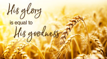 His Glory is Equal to His Goodness (Part 2)