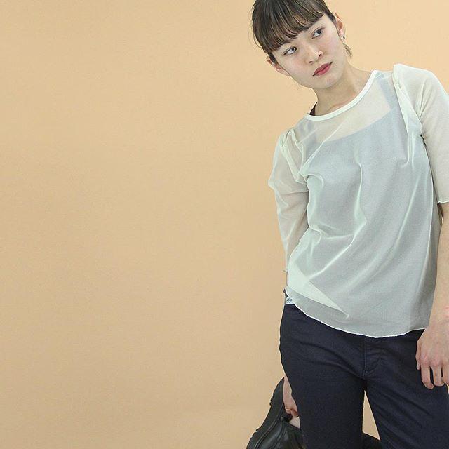 VAIOUS_チュールTシャツ
