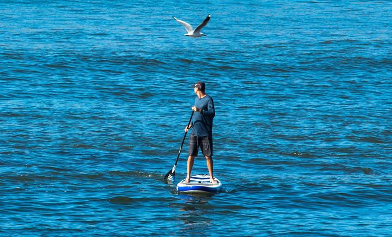 paddle-board-rentals-treasure-coast-florida-2