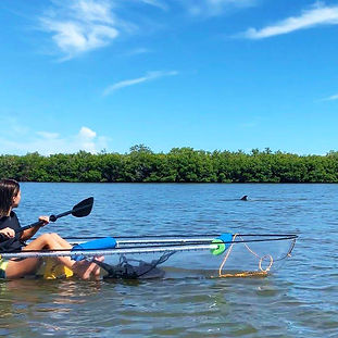 See-through Canoes Rentals