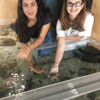 touch-tank-volunteers-indian-river-lagoon.jpg