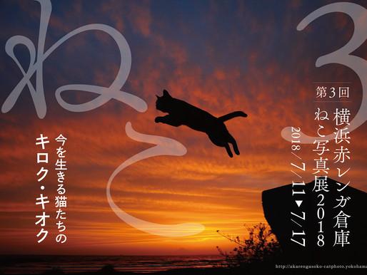 横浜赤レンガ倉庫ねこ写真展2018に参加します。