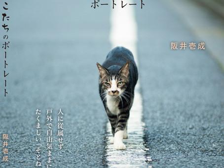 2020.11.13-15 阪井壱成写真集『そとねこたちのポートレート』出版記念展~光・一瞬~