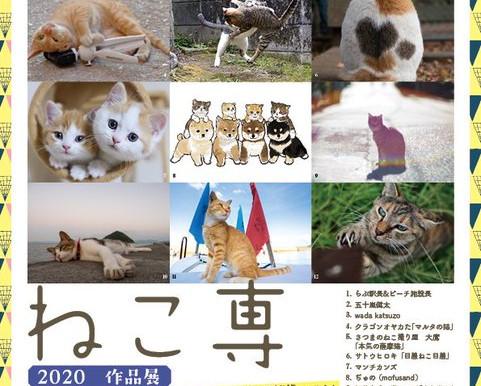 五十嵐健太さん主催の展示「ねこ専」に参加します。
