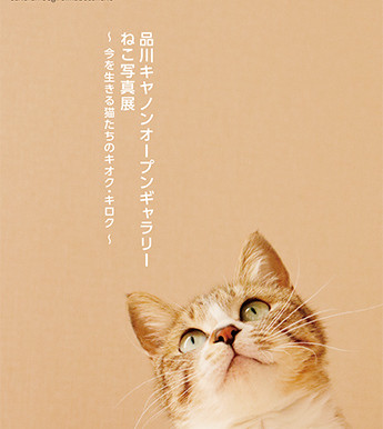 「品川キヤノンオープンギャラリー ねこ写真展」~今を生きる猫たちのキオク・キロク~