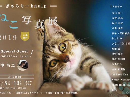 ぎゃらりーKnulp ねこ写真展 2019に参加します。