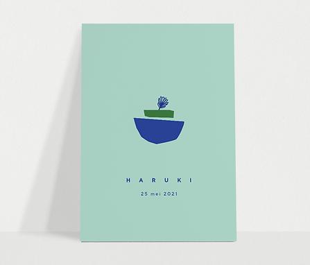 haruki_voorkant.png